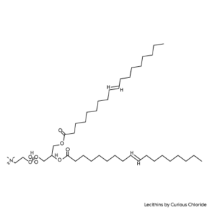 Structural formula of lecithin